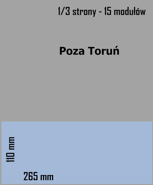 1/3 strony - 15 modułów - 2020.12.10